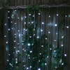 Dual Color Curtain String Light