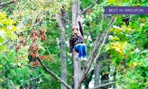Mammoth Cave Adventures: $63 for a Zipline Canopy Tour for Two at Mammoth Cave Adventures ($126 Value)