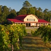 Up to 64% Off Wine-Tasting Outings in Angier