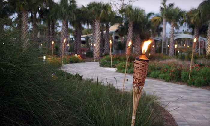 Naples Botanical Garden - East Naples: $15 for Night Lights: A Winter Solstice Celebration at Naples Botanical Garden Outing for Two to (Up to $30 Value)