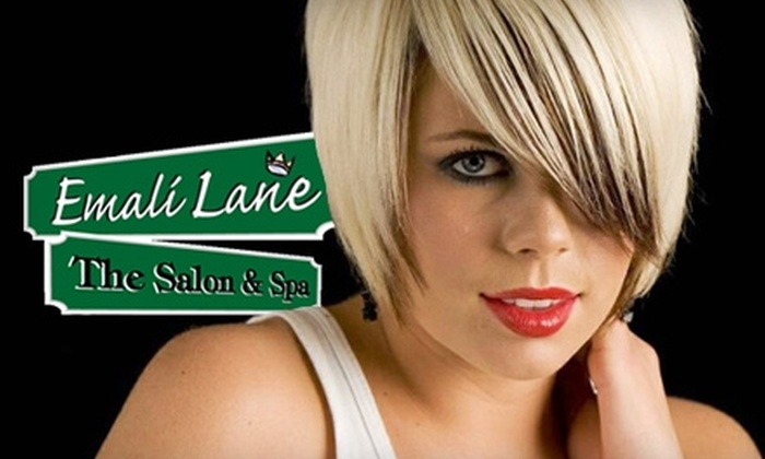 Emali Lane Salon & Spa  - Stone Oak: $40 for a Haircut and Blow-Dry, Half-Hour Massage, and Brow Wax from Emali Lane Salon & Spa