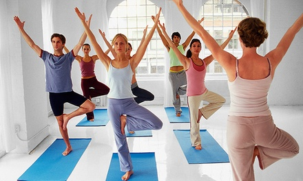 Yoga, Pilates, or Boot-Camp Classes at Bronxville Training by Design (Up to 67% Off). Six Options Available.