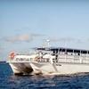 Half Off Eco Cruise in Fernandina Beach