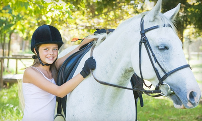 Foxtail Farms - Sacramento: $49 for Two Horseback-Riding Lessons at Foxtail Farms in Wilton ($120 Value)