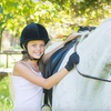 59% Off Horseback-Riding Lessons in Wilton