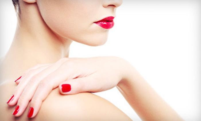 Wynter Dawn Nail Spa - Santa Clara: One or Three Spa Manicures at Wynter Dawn Nail Spa (Up to 63% Off)