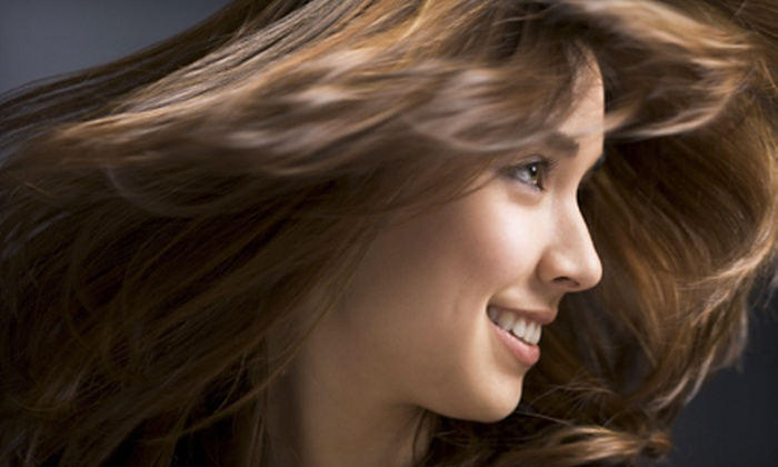 Glo Salon - Grand Ledge: $39 for a Haircare Package with Cut, Color, Conditioning, and Eyebrow Wax from Daelynn Terrell at Glo Salon ($100 Value)