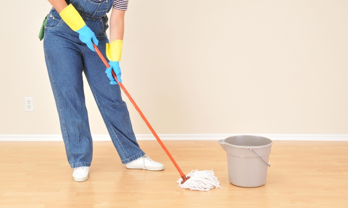 Local Area Cleaning Lady - Oklahoma City: One Hour of Cleaning Services from Local Area Cleaning Lady (46% Off)