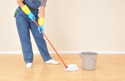 One Hour of Cleaning Services from Local Area Cleaning Lady (46% Off)