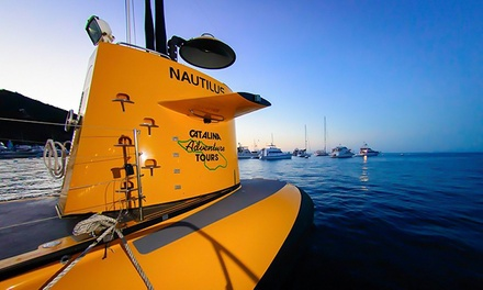 $50, $100, or $150 Value Towards Tours from Catalina Adventure Tours (Up to 50% Off)