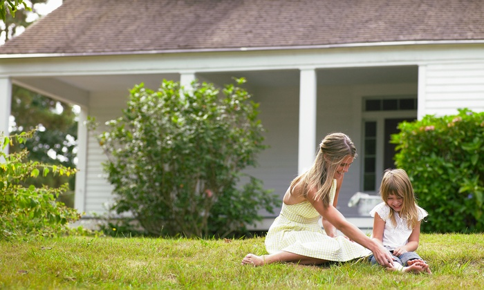 Lawn Doctor of North Tampa - Lutz: $25 for a Mosquito-Control Treatment from Lawn Doctor of North Tampa ($150 Value)