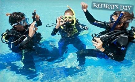 Conch Republic Divers - Conch Republic Divers in Tavernier