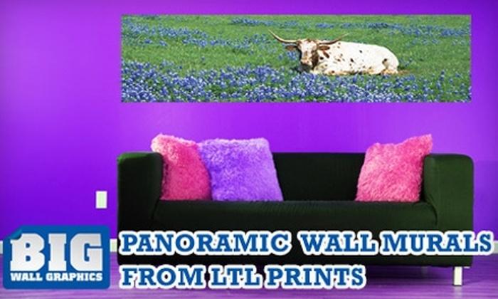Larger Than Life Prints - Austin: $35 Panoramic Wall Mural from Larger Than Life Prints ($84 Value)