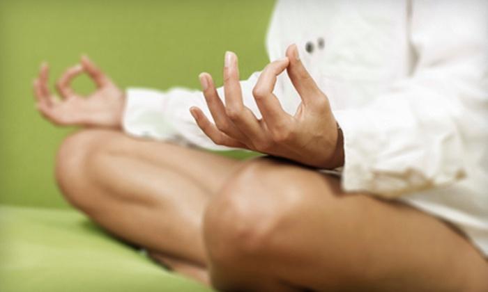 Experience Yoga Studios - Sherwood Green: $25 Toward a 20-Class Package