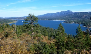 Pet-Friendly Suites in Downtown Big Bear Lake