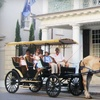Up to Half Off Carriage Tour for Two