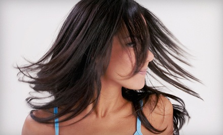 $59 for a Haircut with Full Color from Hair by Melissa at The Salon at Bella Suites ($120 Value)