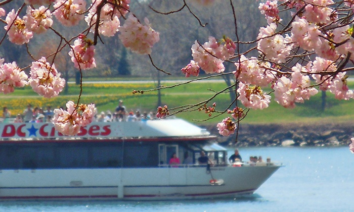 DC Cruises: One-Hour Cherry Blossom Happy Hour Boat Tour for One, Two, or Four from DC Cruises (Up to 50% Off)