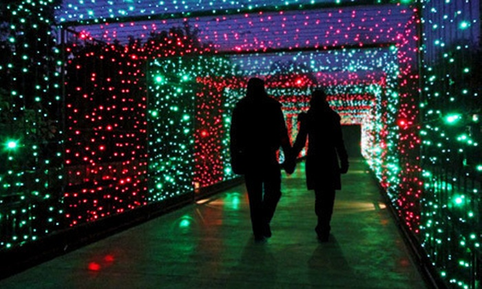 Utah's Hogle Zoo - Sunnyside East: ZooLights! Visit for Two Children, Seniors, or Adults at Utah's Hogle Zoo (Up to Half Off)