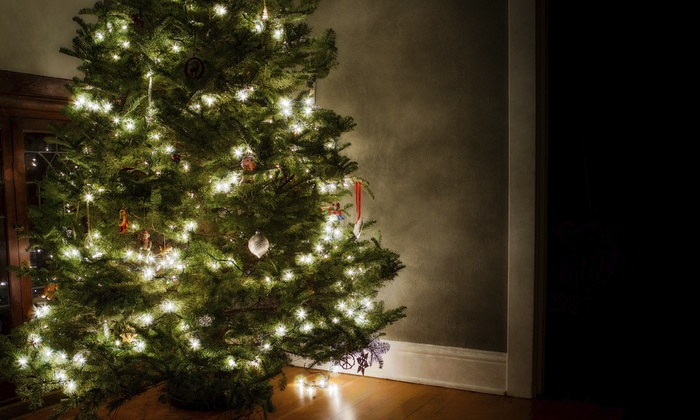 Christmas Trees Arvada - Arvada: Fresh-Cut Noble Fir or Frasier Fir Christmas Trees at Christmas Trees Arvada (50% Off). Two Options Available.
