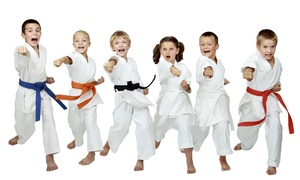 Premier Martial Arts: Four Introductory Martial Arts Classes for One or Two Children at Premier Martial Arts (Up to 68% Off)