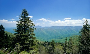 Brookstone Lodge: Stay at Brookstone Lodge in Asheville, NC, with Dates into May