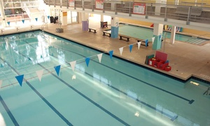 Lenny Krayzelburg Swim Academy: Swimming Lessons at Lenny Krayzelburg Swim Academy (Up to 54% Off)