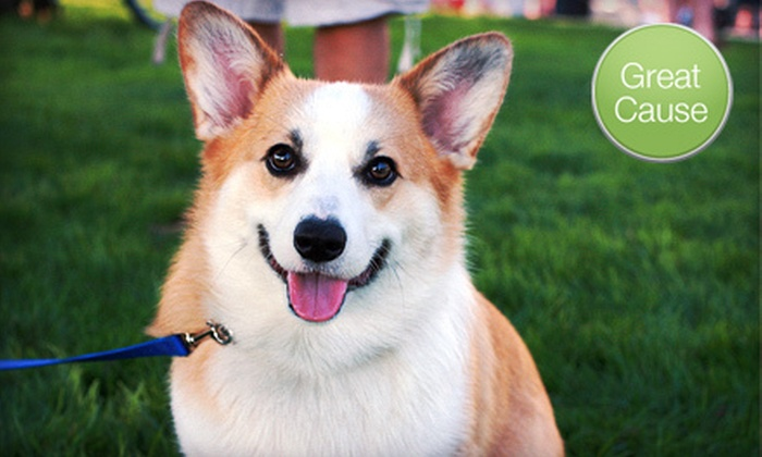 Save-A-Pet  - Fremont: Donations for Pet Meals or Vaccinations