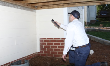 Complete-Home Termite Inspection from Insight Pest Solutions (55% Off)