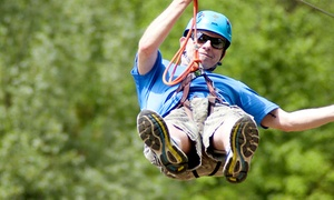 Treetop Eco-Adventure Park: CC$37 for Admission to a Treetop Aerial Course with Zipline at Treetop Eco-Adventure Park (CC$53.09 Value)