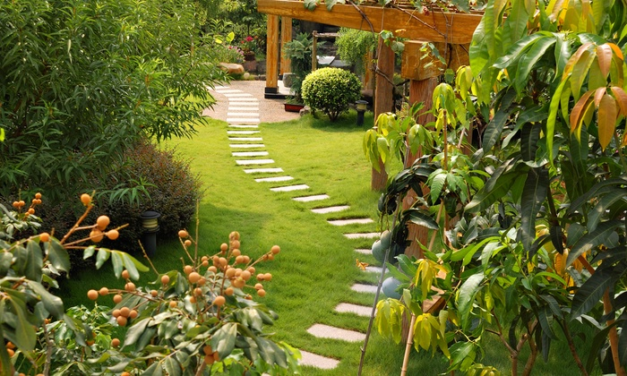 Marvin's Organic Gardens - Turtlecreek: Full-Yard Landscape or Hardscape Design or 1 Yard of Organic Compost from Marvin's Organic Gardens (Up to 85% Off)
