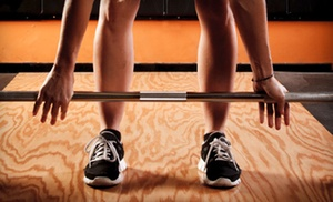 The Cleveland Sports Institute: Two Months of On-Ramp Classes with Optional Fitness Consultation at The Cleveland Sports Institute (Up to 84% Off)
