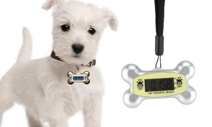 Sharper Image Pet-O-Meter Pedometer: Sharper Image Pet-O-Meter Pedometer. Multiple Colors Available. Free Returns.