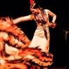 Flamenco con copa o cena