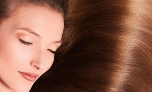 Hair By Terri: Keratin Treatment or Haircut, Shampoo, and Blow-Dry with Optional Highlights at Hair By Terri (Up to 61% Off)