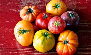 Visit For Two Or Four To The Tomato Festival At Smith Family Farm On August 24 (50% Off)