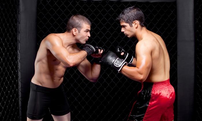 Agoura Boxing Gym - East Agoura: Five Boxing or Brazilian Jiu-Jitsu Classes, or One or Two Months of Classes at Agoura Boxing Gym (Up to 71% Off)