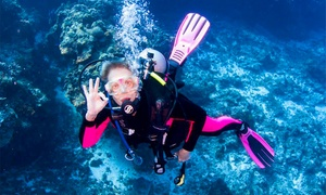 Dive West: $30 for $50 Worth of Scuba Gear and Classes at Dive West