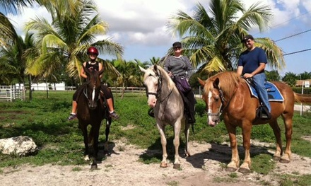$25 for $45 Worth of Horseback Riding — Happy Pony World