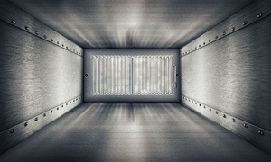 American Duct Cleaners: $29 Home Air Duct Cleaning and Inspection from American Duct Cleaners ($229 Value)
