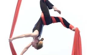 Aerial Arts of Bozeman: An Aerial Fitness Class at Aerial Arts of Bozeman (50% Off)