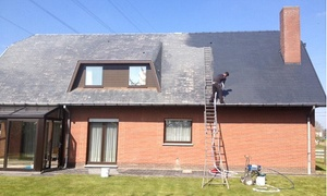 A.D. Cleaning bvba: € 699,99 voor het ontmossen van je dak bij A.D. Cleaning