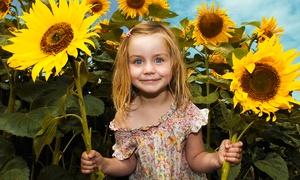 Grow-your-own Sunflower Playhouse Kit