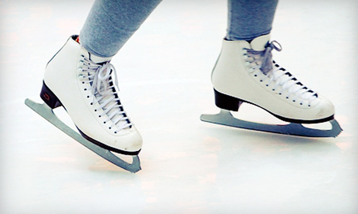 Farmington Hills Ice Arena - Farmington: Six-Week Learn to Skate Class for Ages 3–5 or 6+ at Farmington Hills Ice Arena (Up to 61% Off)