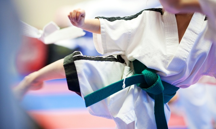 The Dojo of Karate - The Dojo of Karate: $49 for Eight Martial-Arts Training Sessions with Uniform at The Dojo of Karate ($199 Value)