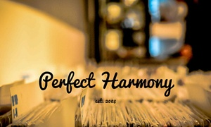 Perfect Harmony: A Private Music Lesson from Perfect Harmony (44% Off)