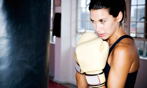Sunshine Training AZ: One Month of Fitness or Boxing Classes and a Fitness Assessment at Sunshine Training AZ (79% Off)