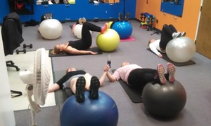 A Better Body Fitness: 10 Circuit Training Classes at A Better Body Fitness (70% Off)