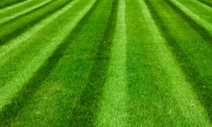 A Complete Lawn Care: $17 for $30 Worth of Lawn and Garden Care at A Complete Lawn Care