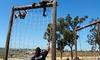 Newport Mesa YMCA - Costa Mesa: One-, Three, or Six-Month Obstacle-Course Membership at Newport Mesa YMCA (Up to 57% Off)